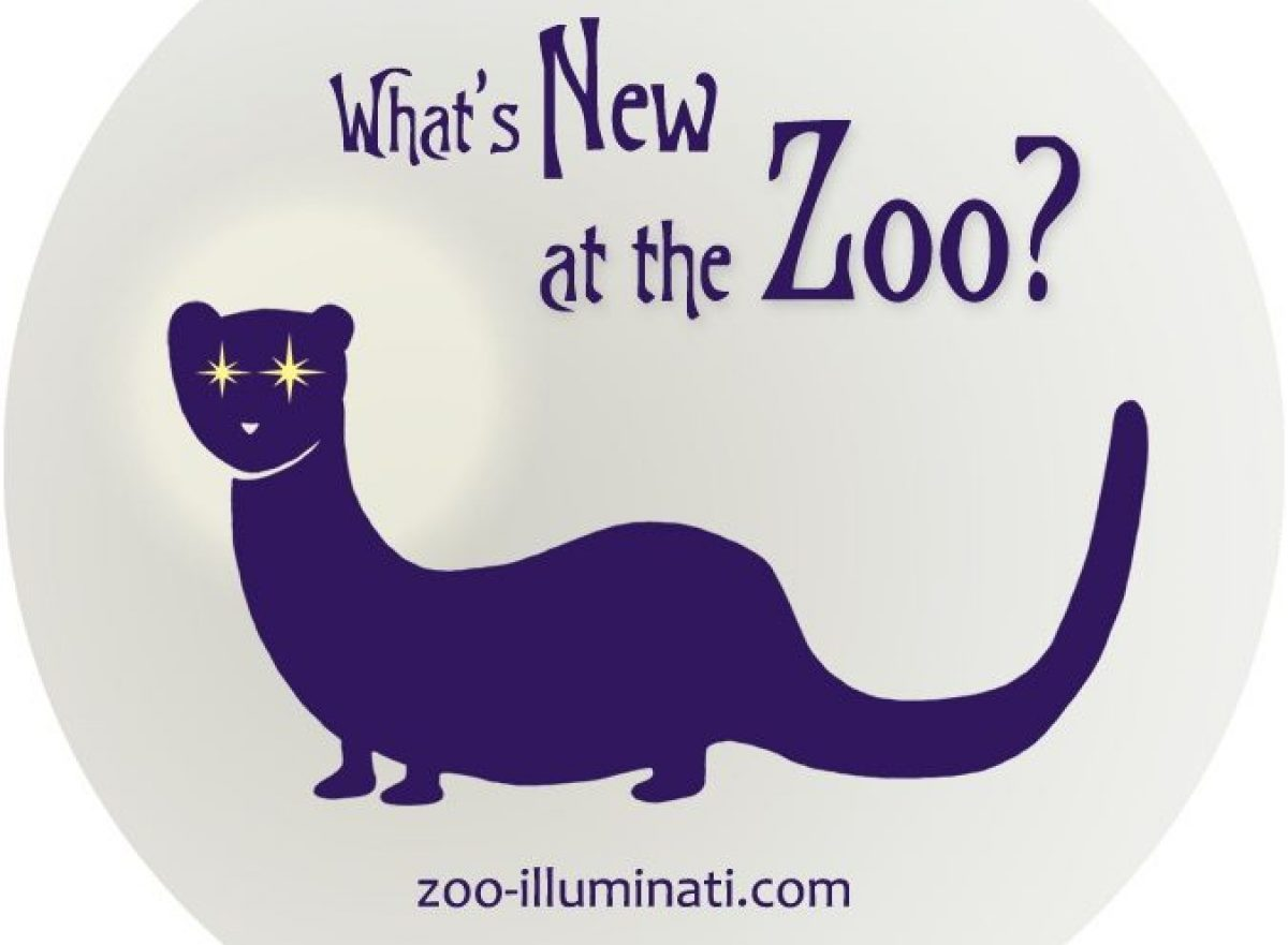 The Zoo Illuminati